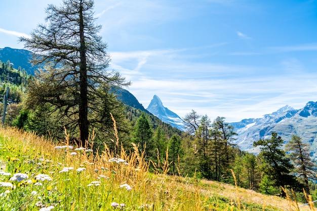 Uitzicht op de piek van de matterhorn in zermatt, zwitserland. Premium Foto