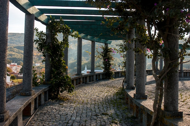 Uitzicht op de tuin van het dorp monchique Premium Foto