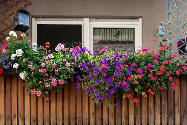 Uitzicht op het balkon ingericht met veelkleurige mooie geraniums. Premium Foto