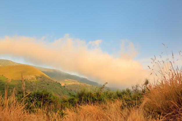 Uitzicht op het landschap van galicië Premium Foto