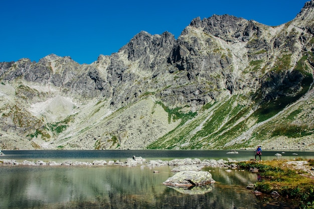 Uitzicht op het prachtige meer in de bergen van de zomer Premium Foto