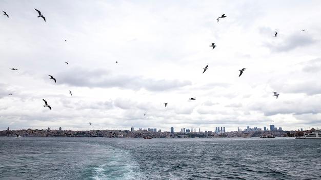 Uitzicht op istanbul vanaf een schip bij bewolkt weer, vliegende zeemeeuwen, golven en schuim als een spoor van de boot, turkije Premium Foto