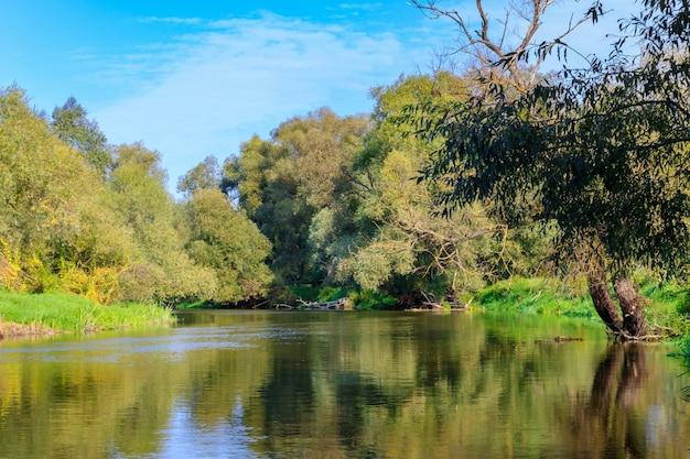 Uitzicht op rivieroppervlak met groene bomen aan oevers op een achtergrond van blauwe hemel Premium Foto