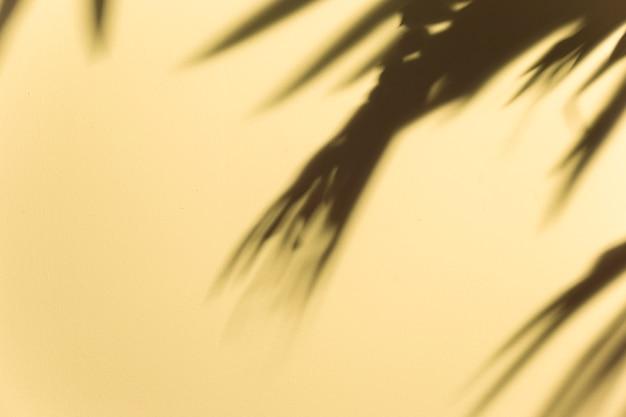 Vage donkere bladerenschaduw op beige achtergrond Gratis Foto