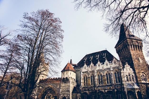 Vajdahunyad castle en jaki chapel, historische attractie voor toeristen. Premium Foto