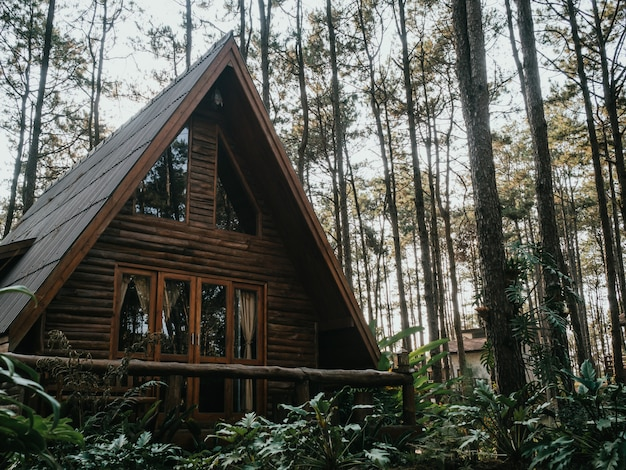 Vakantiehuis in dennenbos Premium Foto