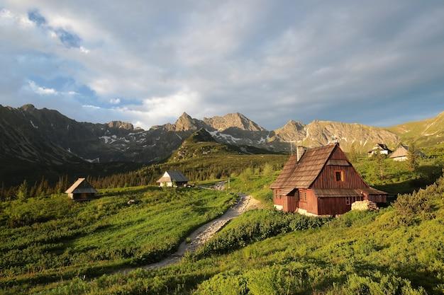 Vallei in de karpaten bij zonsopgang, polen Premium Foto