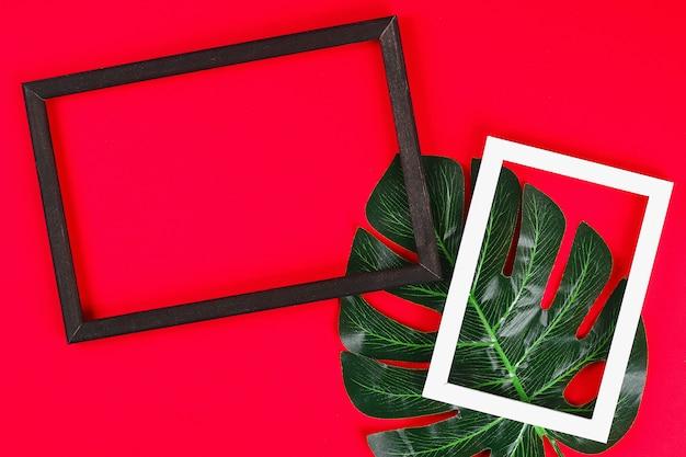 Van het conceptenconcept van de zomerideeën de tropische zwarte witte kadergrens op rode achtergrond, de hoogste ruimte van het meningsexemplaar Premium Foto