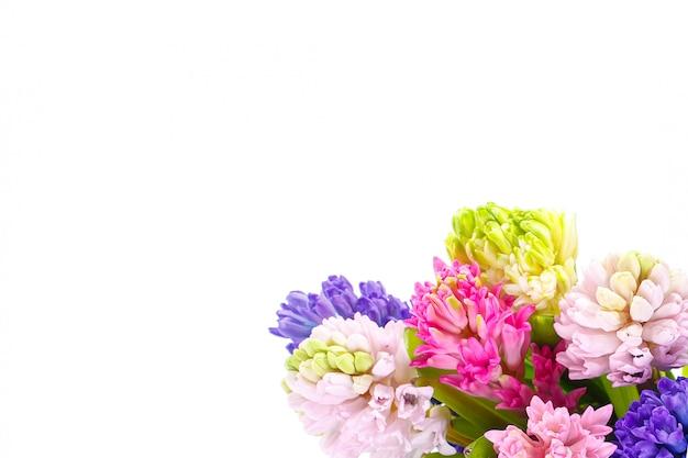 Veelkleurige hyacinten in een boeket op een witte muur Premium Foto