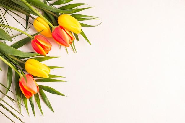 Veelkleurige tulpen en groene bladeren op lichte achtergrond Gratis Foto
