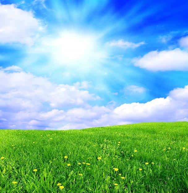 Veld met wolken Gratis Foto