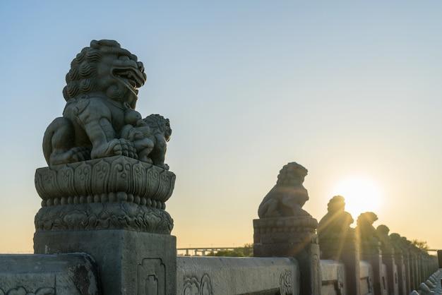 Verboden stad leeuwen Premium Foto