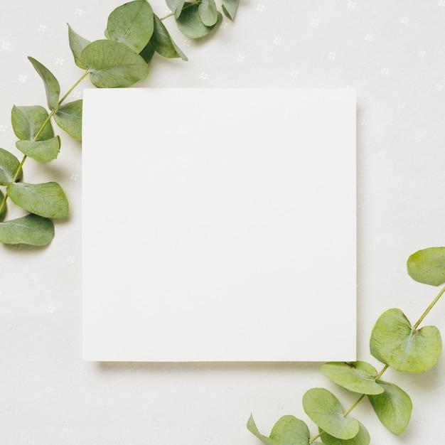 Verlaat takjes op de hoek van witte huwelijkskaart tegen achtergrond Gratis Foto