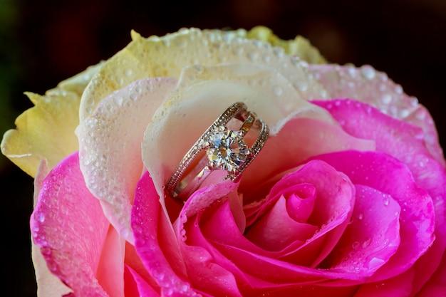 Verlangen, liefde en valentijnsdag Premium Foto