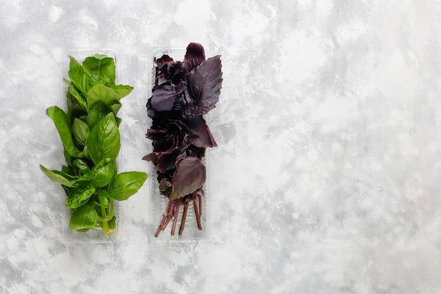 Vers paars en groen basilicum in plastic dozen op grijs beton Gratis Foto