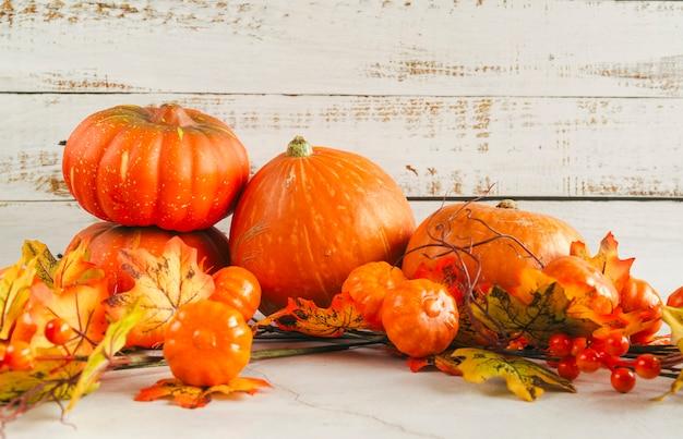 Verschillende pompoenen onder de herfstbladeren Gratis Foto
