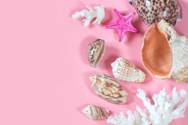 Verschillende schelpen van mariene weekdieren, zeesterren, koralen. mariene decoratieve compositie op pastelroze. Premium Foto