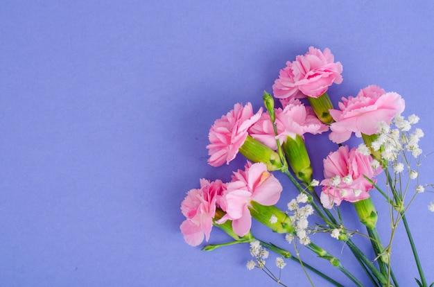 Verschillende verse roze anjers. foto Premium Foto