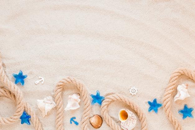 Verschillende zeeschelpen met nautische touw op zand Gratis Foto