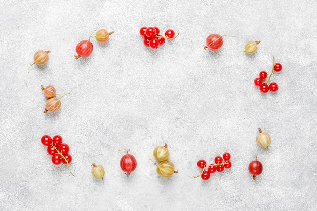 Verse biologische zoete kruisbessen en rode bessen in kommen Gratis Foto