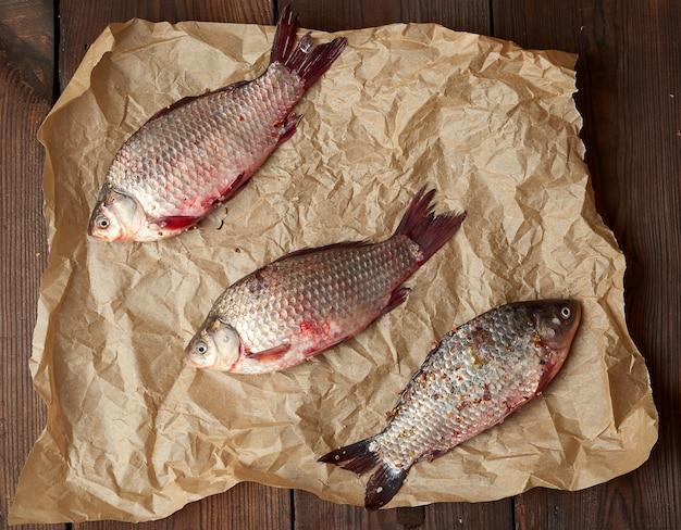 Verse crucian vis met schubben op een verfrommeld bruin stuk papier Premium Foto