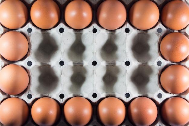 Verse eieren van de boerderij in het paneel witboek. Premium Foto
