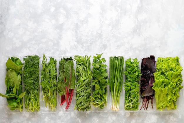 Verse groene basilicum, koriander, sla, paarse basilicum, bergkoriander, dille, groene ui in plastic dozen op grijs beton Gratis Foto