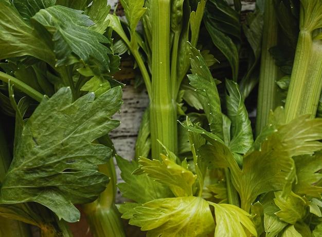 Verse groene groente van de close-up Gratis Foto
