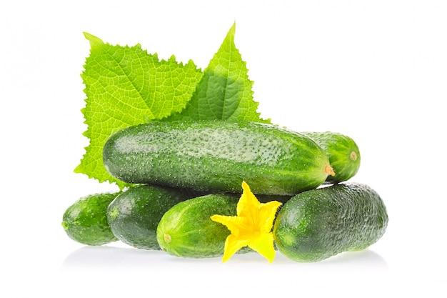Verse groene komkommer natuurlijke groenten met blad en geïsoleerde bloem Premium Foto