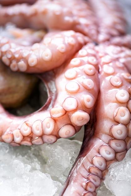 Verse rauwe octopus op ijs, grijs beton. Premium Foto