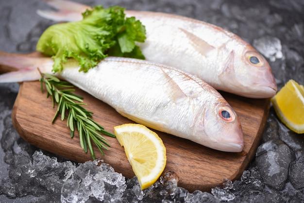Verse rauwe vis met ingrediënten Premium Foto