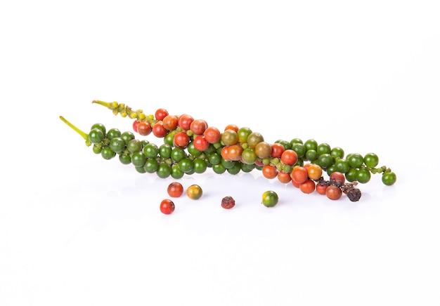 Verse rode en groene peperkorrels voor harversttijd die op een witte achtergrond wordt geïsoleerd. Premium Foto