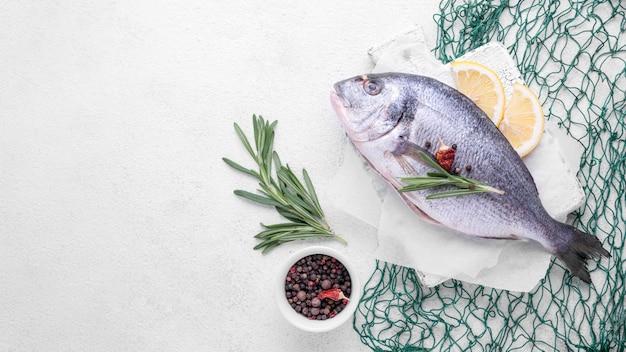 Verse zeebrasemvissen en groene vis netto exemplaarruimte Premium Foto