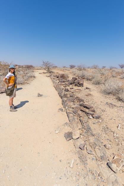 Versteende en gemineraliseerde boomstam. toerist in het beroemde verstijfde van angst bos nationaal park in khorixas, namibië, afrika. 280 miljoen jaar oud bos, klimaatveranderingconcept Premium Foto