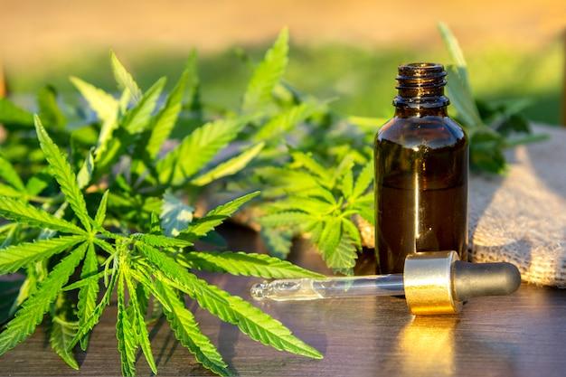 Vertakking cannabis met vijf vingers bladeren en pipet druppelaar met druppel in de buurt van glazen fles. Premium Foto