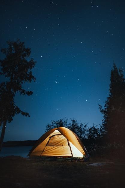 Verticaal schot van een het kamperen tent dichtbij bomen tijdens nacht Gratis Foto