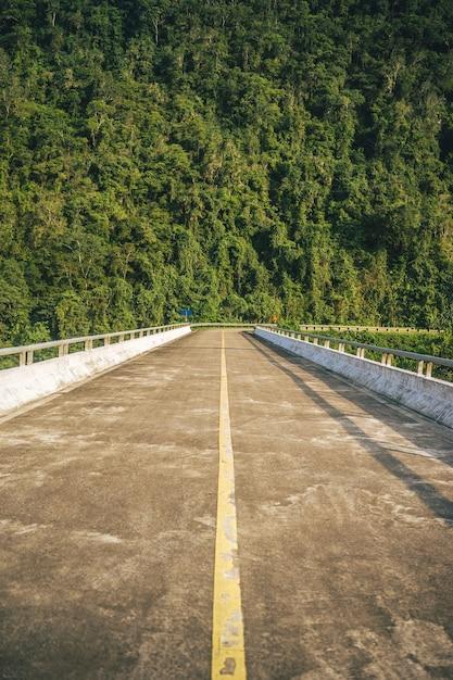 Verticaal schot van een lange brug tegen een bosberg Gratis Foto