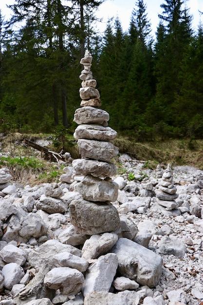 Verticaal schot van een stapel rotsen in een bos - bedrijfsstabiliteitsconcept Gratis Foto