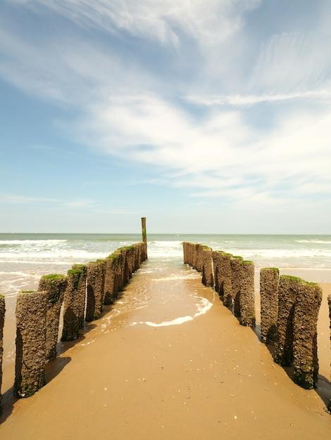 Verticaal schot van houten golfbrekers op het gouden zandstrand met een duidelijke zonnige hemel Gratis Foto