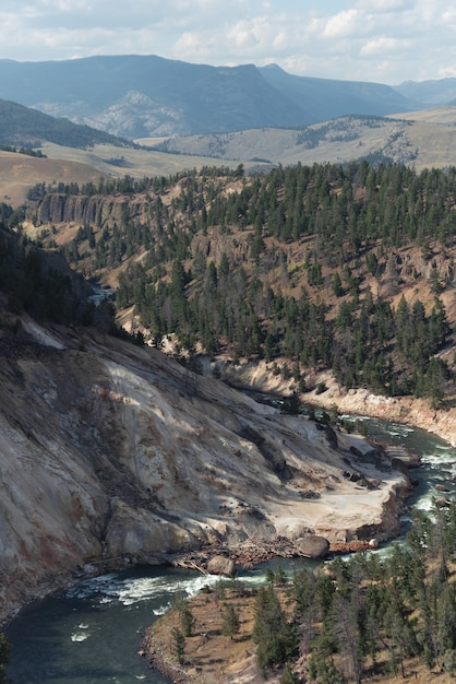 Verticaal schot van landschap in yellowstone national park, wyoming, vs. Gratis Foto
