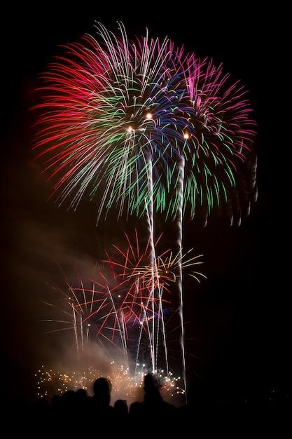 Verticaal schot van mooi kleurrijk vuurwerk onder de donkere nachthemel Gratis Foto