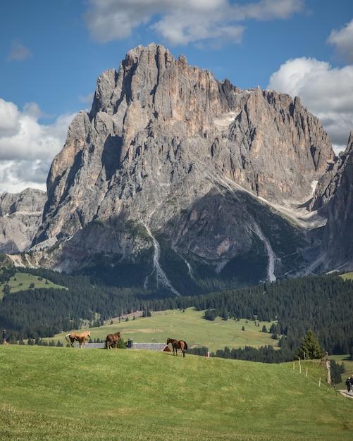 Verticaal schot van seiser alm - alpe di siusi met breed weiland en paarden in compatsch italië Gratis Foto