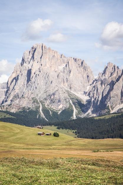 Verticaal schot van seiser alm - alpe di siusi met breed weiland in compatsch italië Gratis Foto