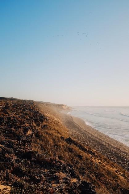 Verticaal schot van strand bij zonsopgang door de kalme oceaan Gratis Foto