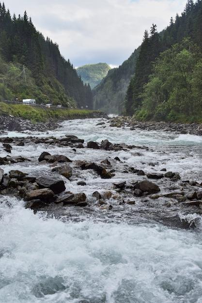 Verticaal schot van water dat tussen de rotsen in het midden van bomen onder een bewolkte hemel stroomt Gratis Foto