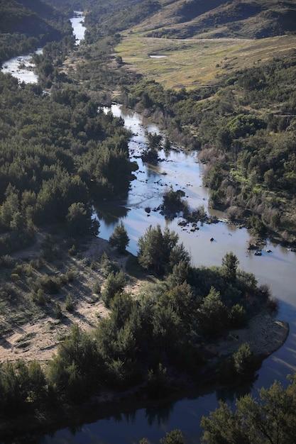 Verticale afbeelding van een creek rivier omgeven door groen Gratis Foto