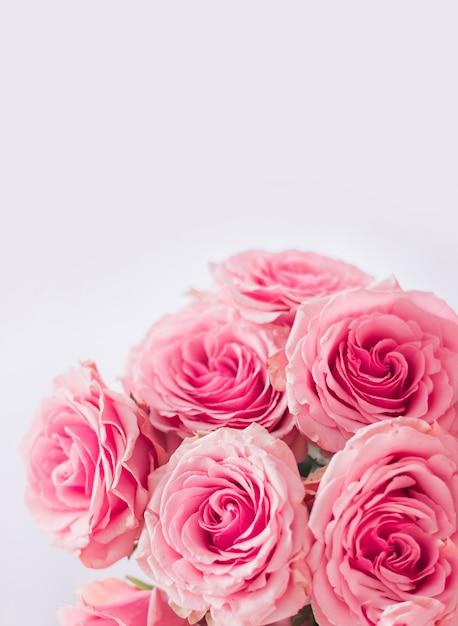 Verticale bloemenachtergrond. delicate briefkaart, frame met roze rozen close-up op een witte achtergrond. ruimte voor tekst. Premium Foto