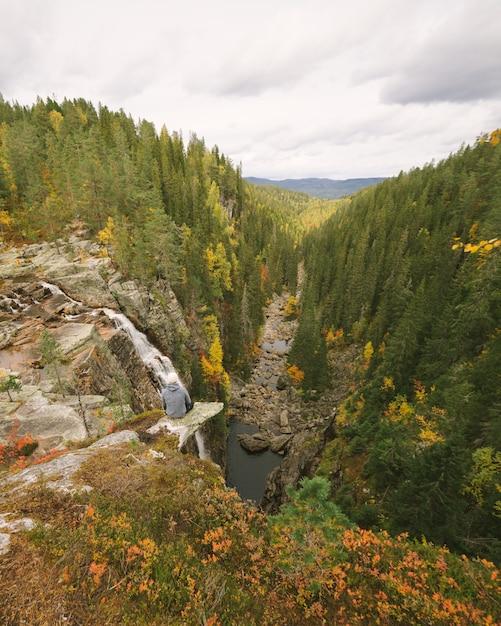 Verticale hoge hoek opname van een prachtig landschap met veel groene bomen en een rivier in noorwegen Gratis Foto