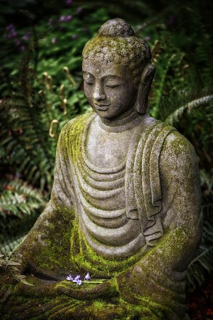 Verticale opname van een boeddhabeeld met mos erop en groen in de verte Gratis Foto