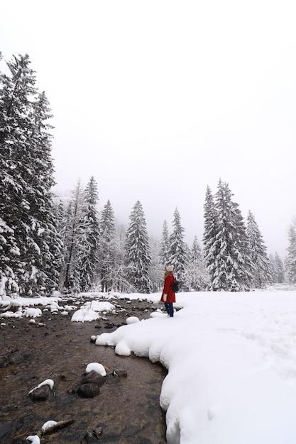 Verticale opname van een persoon in een rode jas die zich in een veld bevindt dat in de winter met bomen en sneeuw wordt bedekt Gratis Foto